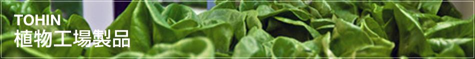 TOHIN 植物工場製品